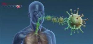 Prise en charge de l'infection au nouveau coronavirus – Document OMS