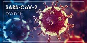 COVID-19 : une nouvelle étude conforte l'infectiosité pré-symptomatique du virus